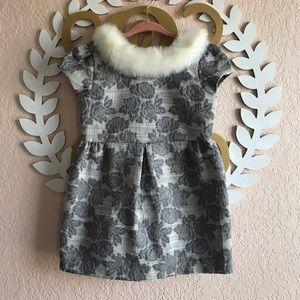 Janie and Jack Grey Jacquard Faux Fur Collar Dress